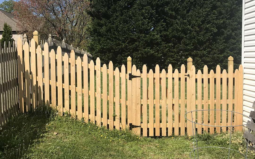 Fence /01/